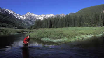 Fly Fishing the Piney River in Colorado